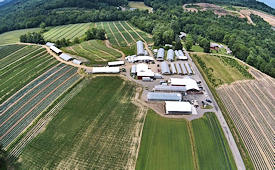 Our Farm Complex - Click to enlarge